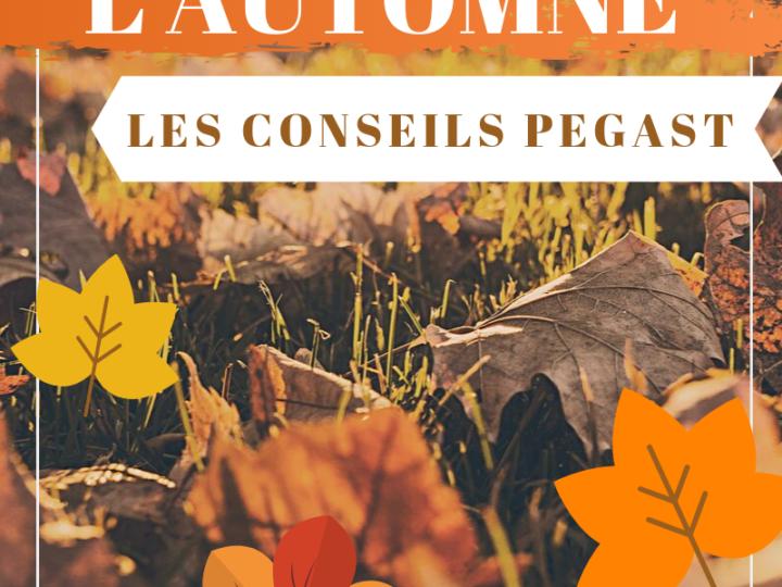 L'automne : les gestes à adopter